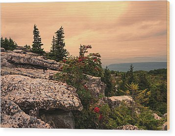 Bear Rocks Sunset Wood Print