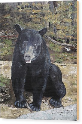 Wood Print featuring the painting Bear - Wildlife Art - Ursus Americanus by Jan Dappen