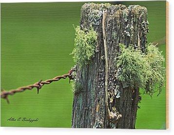 Wood Print featuring the photograph Bearded Post by Allen Biedrzycki