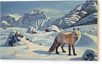 Beartooth Fox Wood Print by Paul Krapf