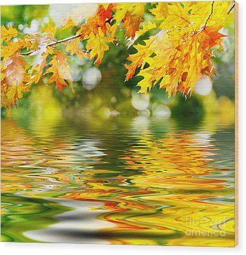 Beautiful Autumn Leaves Wood Print by Boon Mee