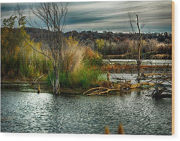 Beautiful Autumn Marsh Wood Print by Kimberleigh Ladd