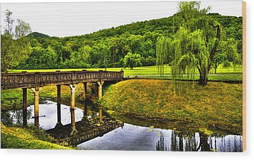 Beautiful Blowing Spring Park Wood Print by David Patterson