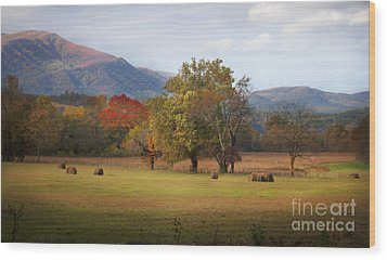 Beautiful Cades Cove Wood Print by Lena Auxier