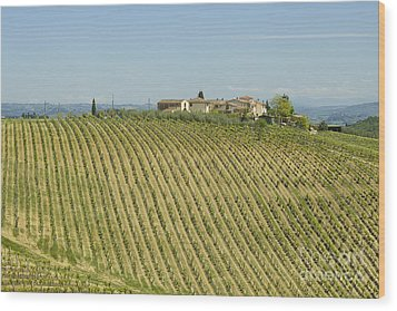 Beautiful Chianti Region In Tuscany Wood Print by Patricia Hofmeester