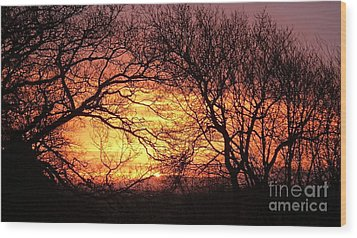 Beautiful Dawn Wood Print