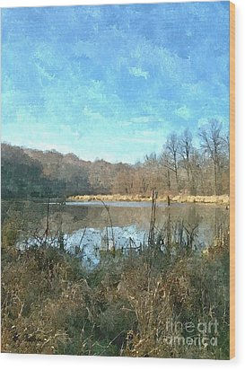 Wood Print featuring the photograph Beautiful Day 2 by Sara  Raber
