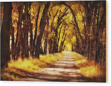 Beautiful Fall Day In Nebraska Wood Print by Julie Hamilton