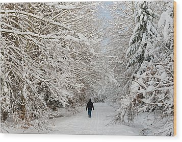 Beautiful Forest In Winter With Snow Covered Trees Wood Print by Matthias Hauser