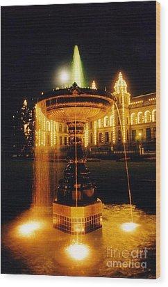Beautiful Fountain At Night Wood Print by John Malone