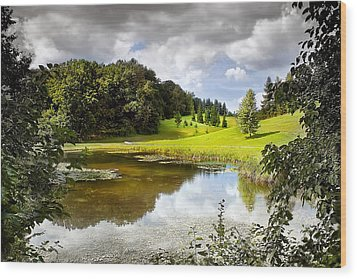 Beautiful Garden Summer Landscape Wood Print