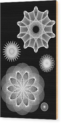 Beautiful Geometry Bw Wood Print by Angelina Vick