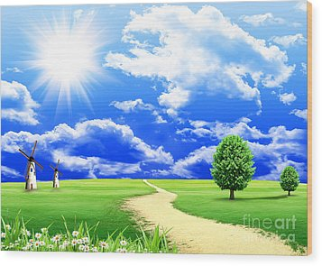 Beautiful Green Field Wood Print by Boon Mee