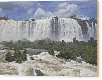 Beautiful Iguazu Waterfalls  Wood Print