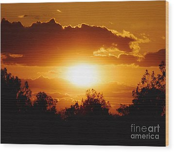 Wood Print featuring the photograph Beautiful Moment In Bakersfield by Meghan at FireBonnet Art
