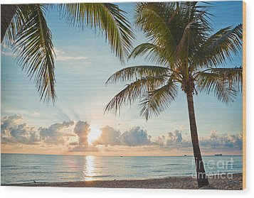 Beautiful Morning In Ft. Lauderdale Florida Wood Print by Sharon Dominick