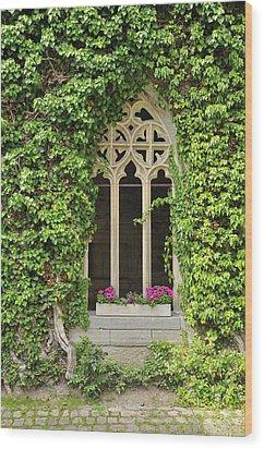 Beautiful Old Window Wood Print