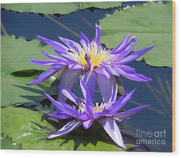 Wood Print featuring the photograph Beautiful Purple Lilies by Chrisann Ellis