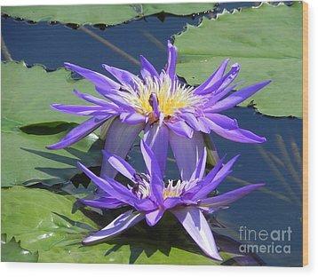 Beautiful Purple Lilies Wood Print by Chrisann Ellis