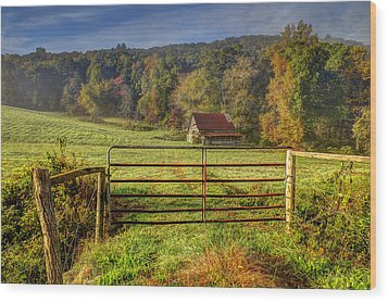 Beautiful Reds Of Autumn Wood Print by Debra and Dave Vanderlaan