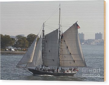 Beautiful Sailboat In Manhattan Harbor Wood Print by John Telfer