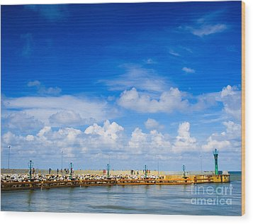 Beautiful Sea Sky Wood Print by Boon Mee