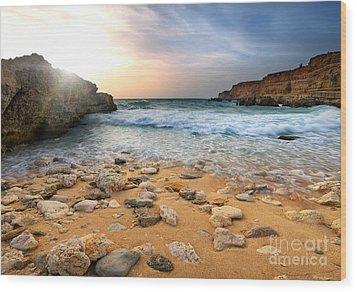 Beautiful Sea Stones Wood Print by Boon Mee