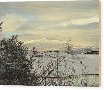 Beautiful Sparkling Snow Wood Print by Phyllis Kaltenbach