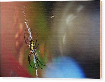 Beautiful Spider Wood Print by Adam LeCroy