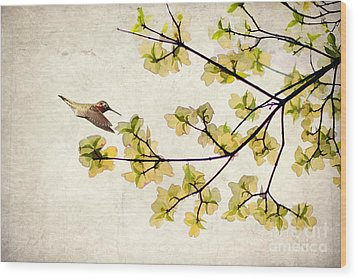 Beautiful Spring Wood Print by Darren Fisher