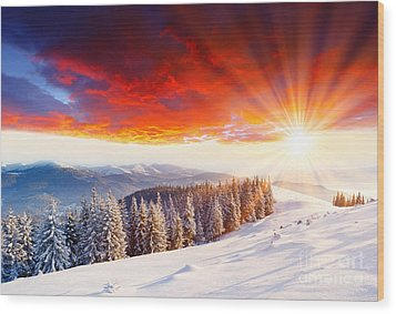 Beautiful Sunset In The Winter Wood Print by Boon Mee