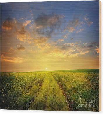 Beautiful Sunsets Photos Wood Print by Boon Mee