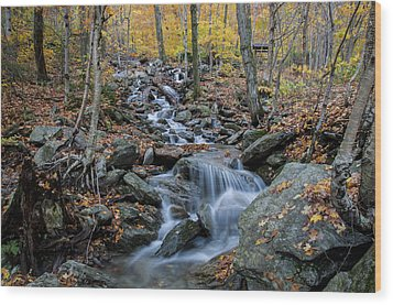 Beautiful Vermont Scenery 31 Wood Print by Paul Cannon