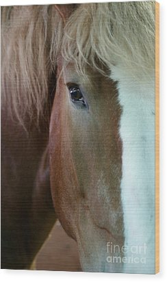 Beautiful Within Him Was The Spirit - 2 Wood Print by Linda Shafer