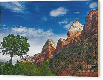 Beautiful Zion Wood Print by Robert Bales