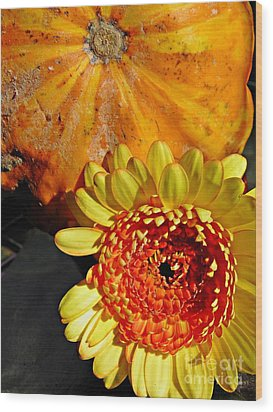 Beauty And The Squash 2 Wood Print by Sarah Loft