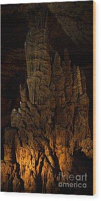 Beauty Below Wood Print by Julie Clements
