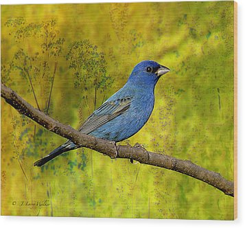 Wood Print featuring the digital art Beauty In Nature - Indigo Bunting by J Larry Walker