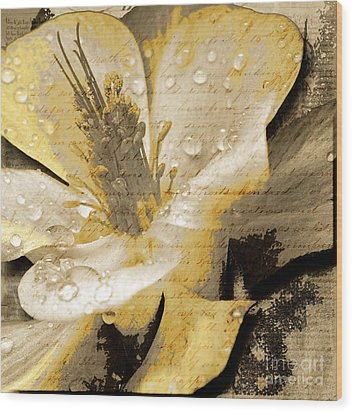 Beauty Iv Wood Print by Yanni Theodorou