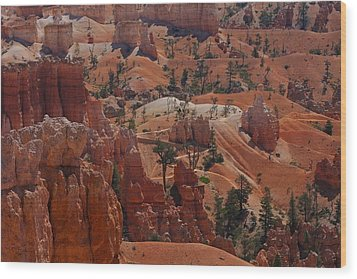 Beauty Of Bryce Wood Print by Kimberly Oegerle
