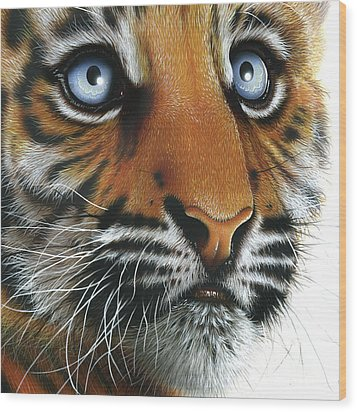 Beauty Of My Mother's Eyes Wood Print by Jurek Zamoyski