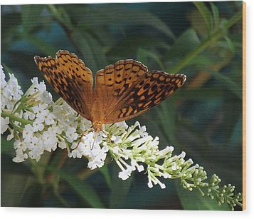 Wood Print featuring the photograph Beauty Of Nature by James McAdams