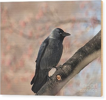Wood Print featuring the photograph Beauty Of Nature by Rose-Maries Pictures