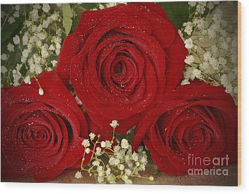 Beauty Of Roses Wood Print by Inspired Nature Photography Fine Art Photography