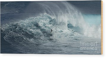 Beauty Of The Extreme Wood Print by Bob Christopher