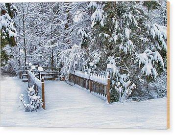 Beauty Of Winter Wood Print by Kathy Jennings