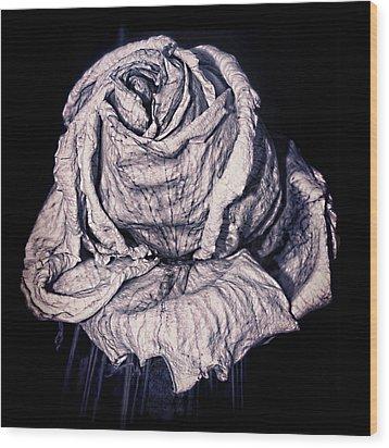 Beauty Wrinkle Wood Print by Kristi Swift