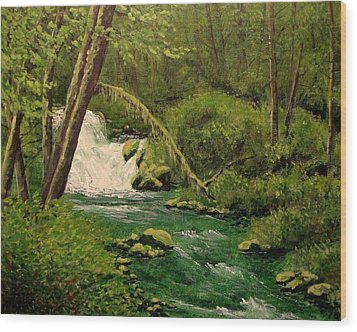 Beaver Creek Falls Wood Print