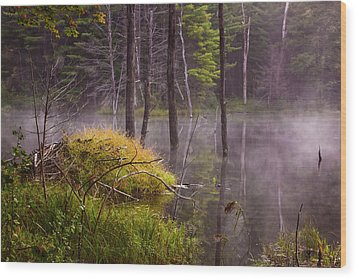 Wood Print featuring the photograph Beaver Lodge by Tom Singleton