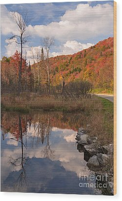 Beaver Pond Symmetry Wood Print